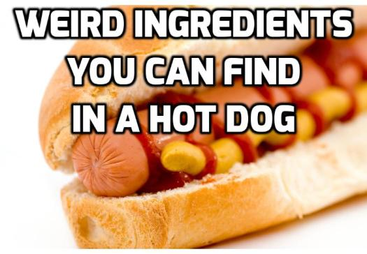 Health Warnings - What is Actually in a Hot Dog? There is no doubt that Americans love a good hot dog. But what you can find in a hot dog can make you throw up. Read this 1st before you are going to eat a hot dog.