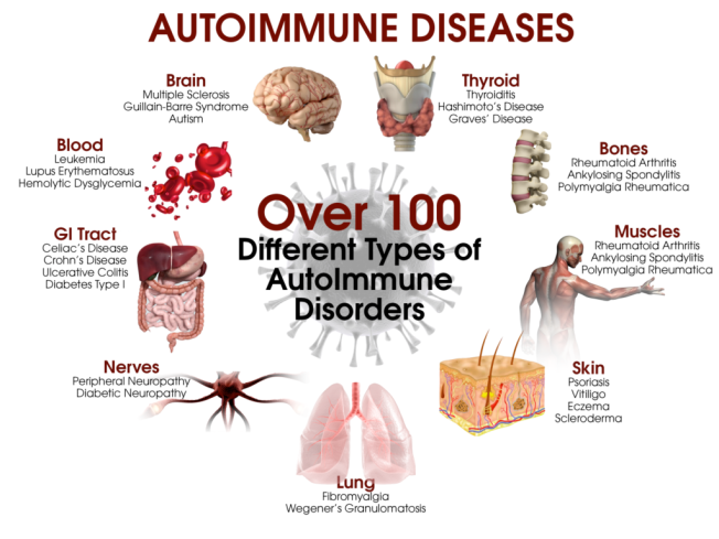 How Best to Really Fight Autoimmune Disease Absolutely? What is autoimmune disease actually and how to fight autoimmune disease? Read on here to find out more.